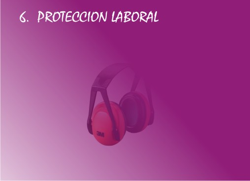Protección laboral